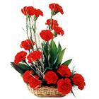 Pretty 18 Red Carnations  to Sodepur
