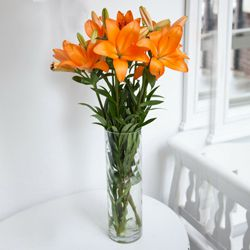 Resplendent Lilies in a Vase to Calcutta