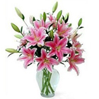 Ravishing Oriental Pink Lilies in Vase to Alwar