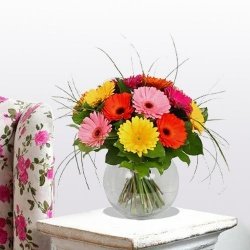 Beautiful bright Gerberas in a Vase to Bolpur