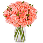 Respledent Pink Carnations with Vase to Allahabad