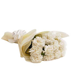 Magical Pursuit of Happiness White Carnations Bunch to Noida