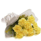 Cherished Sunshine Bunch of Yellow Carnations to Alwar