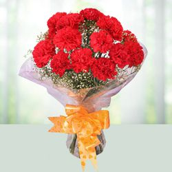 Artful Red Coloured Carnations Bouquet<br> to Adilabad