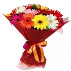 Luxurious Mixed Gerberas Bouquet to Gurgaon
