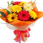 Luxurious Friends Last Forever 10 Gerberas Selection to Aleppy