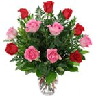 Perfect Combination of Beautiful Roses Bouquet to Noida