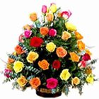 Flowering Sweetheart Selection of Mixed Roses to Jalandhar