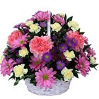 Display of Multiple Seasonal Flowers in a Basket to Vellore