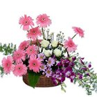 Blooming Summer Delight Premium Arrangement of Mixed Flowers to Hyderabad