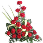Lovely Unending Passion Presentation of Carnations in Red Colour to Udumelpet