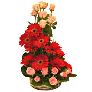 Fragrant Tenderness Gerberas and Roses Special Arrangement to Trichur