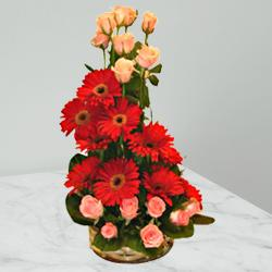 Fragrant Tenderness Gerberas and Roses Special Arrangement to India