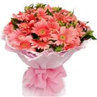 Sprouting Magnetism Gerberas Bouquet to Chandigarh