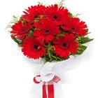 Bustling Beauty Red Gerberas Bouquet to Gurgaon