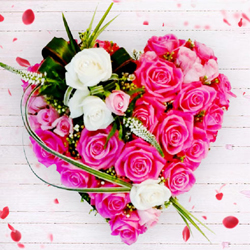 Wonderful Heart of 36 pcs Pink N White Roses to Agartala