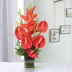 Amusing Red Anthurium with BOP Arrangement in a Glass Vase to Adilabad