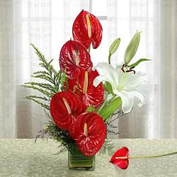 Exotic Anthurium n Lilies in a Glass Vase to Adilabad