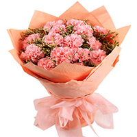 Send online this lovely Bouquet of Tissue Wrapped Pink Carnations to Bulandsher