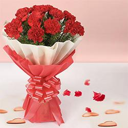 Click to send online this royal looking Bouquet of Red Carnations in tissue wrapping to Patiala