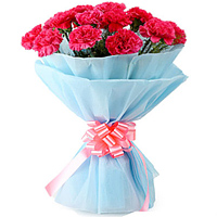 Send Online this lovely Bunch of Pink Carnations in a tissue wrapping to Bangalore