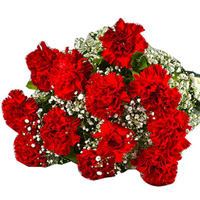 Send online this royal looking Hand Bouquet of Red Carnations to Warangal