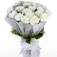 Send Online this royal looking Hand Bunch of Online White Cranations in a tissue wrap to Bhuj