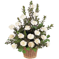 Send online this good looking White Carnations online basket to Ambur
