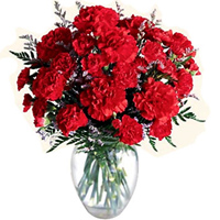 Click to send online these lovely Red Carnations in a designer glass vase to Alwar
