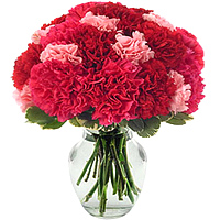 Deliver this petite arrangement of Red & Pink Carnations in a glass vase to Lucknow