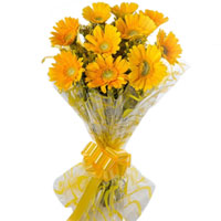 Beautiful Bouquet of Yellow Color Gerberas