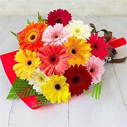Exotic Bunch of Mixed Gerberas