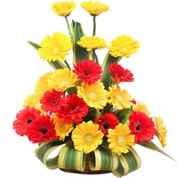 Exquisite Red & Yellow Gerberas Bouquet