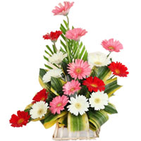 Exotic Bouquet of Mixed Gerberas
