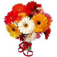 Charming Assorted Gerberas arranged in a Glass Vase