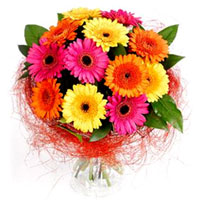 Stylish Bunch of Mixed Color Gerberas