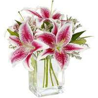 Mesmerizing Glass Vase display of Pink Lilies