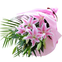 Delicate Pink Color Lilies Bunch
