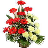 Charming Red Gerberas N Yellow Carnations  Basket Arrangement to Amlapuram