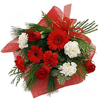 Tender Bouquet of Red & White Carnations with Red Gerberas & Red Roses to Amlapuram