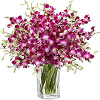 Fresh Orchids Placed in a Glass Vase to Adilabad