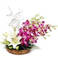 Artistic Basket Arrangement of Orchids with White Lilies to Thane
