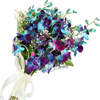Magnificent Blue Orchids Hand Bunch to Kaithal