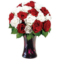 Glorious Red & White Roses in a Glass Vase 