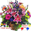 Nicely Gift Wrapped Colourful Flowers Basket with free Gulal/Abir Pouch.