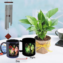 Wonderful Personalized Photo Radium Mug with Money Plant N Wind Chime to Akola