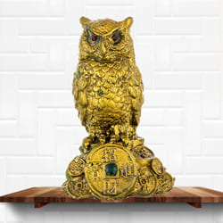Mesmerizing Feng Shui Owl Showpiece for Money and Wisdom to Adugodi