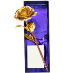 Special Love Golden Rose Stick to Aligarh