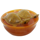 Fengshui Bowl with  Tortoise to Karaikudi