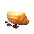 Superb IRIS Sea Shell Candle Set to Ranchi